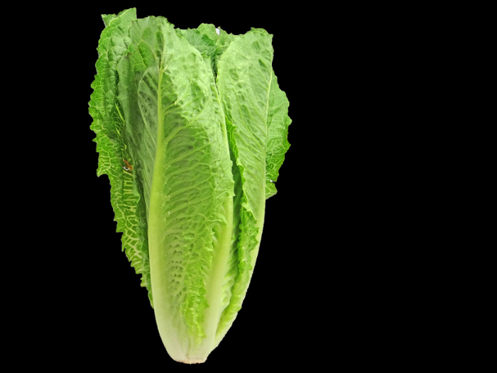 Outbreak: Romaine Lettuce and E. coli